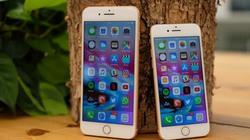 """Bộ ba iPhone 2018 ế hàng, iPhone 8, iPhone 8 Plus """"lên ngôi"""""""