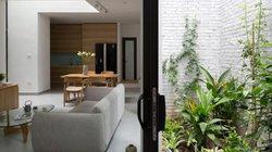 Nhà ống trong ngõ nhỏ ở Thụy Khuê, Hà Nội mà đẹp như biệt thự sân vườn