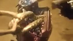 SỐC: Bắt sống con trăn cuộn tròn trong mặt nạ xe tay ga