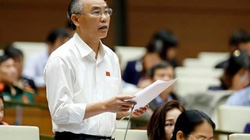 Thứ trưởng Bộ NNPTNT Phùng Đức Tiến: Sẽ dự báo tốt hơn về chăn nuôi