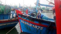"""Bão số 9 """"né"""" Bình Định, ngư dân vẫn chủ động neo đậu tàu thuyền"""