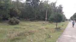 Ủy ban Kiểm tra Tỉnh ủy TT-Huế vào cuộc vụ cán bộ được cấp đất rừng