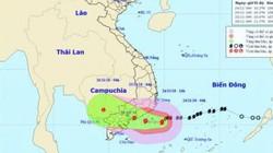 Di dời khẩn hơn 500 dân ở Cần Giờ để tránh bão số 9