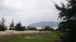 TT-Huế: Phó Chủ tịch huyện được cấp đất rừng nói gì?