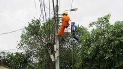 Điện lực Hòa Vang thắp sáng thêm nhiều vùng quê