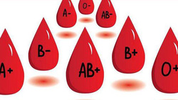 Vì sao biết nhóm máu của mình lại giúp qua mặt được thần chết?