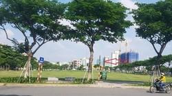"""Kiểm toán """"chấn chỉnh"""" lý do hủy kết quả đấu giá đất của UBND TP Đà Nẵng"""