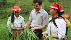 Kinh doanh ngành thuốc bảo vệ thực vật... ảm đạm