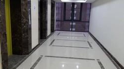 """Ông chủ Lạc Hồng Lotus N01T5 lên tiếng việc bị tố """"bớt"""" thang máy"""
