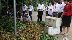 Sơn La: Khuyến nông cầm tay chỉ việc giúp nông dân khá, giàu
