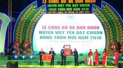 Việt Yên (Bắc Giang) đón Bằng công nhận huyện đạt chuẩn nông thôn mới