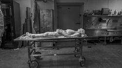 Tình nguyện đông lạnh cơ thể, cắt làm 27.000 lát mỏng phục vụ khoa học
