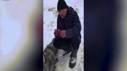 Video: Thợ săn ăn sống tim sói để trả thù gây tranh cãi ở Kazakhstan