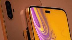 """iPhone XI và XI Plus đẹp hoàn hảo, fan """"Táo khuyết"""" đứng ngồi không yên"""