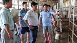 An Giang: Thôi bôn ba xứ người, về làm giàu nhờ cá bống, bò thịt