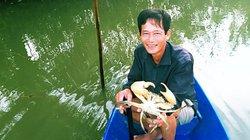 Cua biển ngon nhất nước tăng giá trước Tết, nông dân hồ hởi