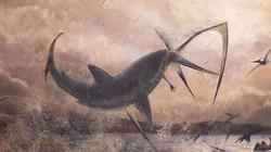 Cá mập từng phi thân lên trời ngoạm cổ thằn lằn bay
