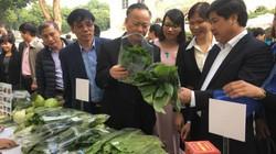 Người dân tíu tít đến mua rau, thịt sạch ở Thành ủy Hà Nội