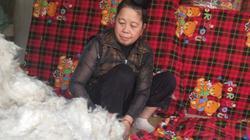 Giữa phố thị ồn ào, vẫn có người phụ nữ tỉ mẩn làm đệm bông gạo