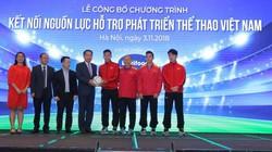 Vì sao đội tuyển Việt Nam vô địch AFF Suzuki Cup 2018?