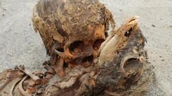 Khám phá những xác ướp hiến tế còn nguyên vẹn từ thời kỳ tiền Inca
