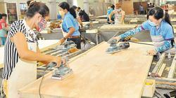 Ngành chế biến gỗ hướng đến mục tiêu 10 tỷ USD