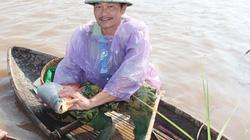 Quây lưới nuôi cá đồng trũng, cá chỉ ăn bèo, cỏ dại mà toàn con to