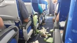 Máy bay Bamboo Airways gặp sự cố rơi hẫng 2 lần vẫn hạ cánh an toàn
