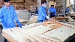 Xuất khẩu tăng đột biến, nhiều mặt hàng của Việt Nam bị điều tra