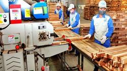 """Trùng với sản phẩm Trung Quốc, gỗ Việt xuất khẩu đứng trước """"cảnh báo đỏ"""""""