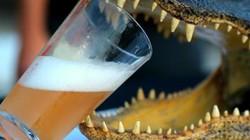 Tra tay vào còng vì ép cá sấu uống bia