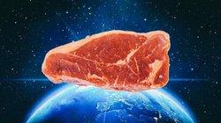 Israel: Tạo ra thịt bò mà không cần nuôi con bò