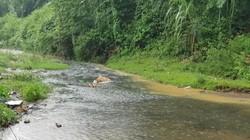 Dân HN khốn khổ vì nước có mùi lạ: Do chất thải từ đầu nguồn sông Đà?