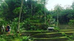 Bali phải đi trong đời