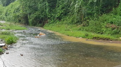 Phát hiện bất ngờ ở NM nước Sông Đà khiến nước sạch tại HN có mùi lạ