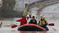 Gần 50 người chết do siêu bão Hagibis