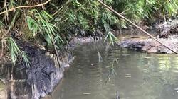 Kẻ đổ trộm dầu thải khiến nước sạch Sông Đà có mùi bị xử lý ra sao?