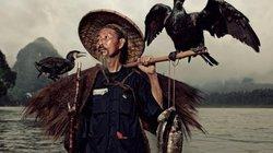 Độc đáo: Nghề lạ câu cá trên sông về đêm... bằng chim