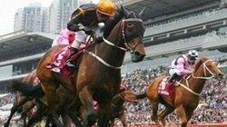 """""""Đại gia"""" Hàn Quốc được cho phép đầu tư trường đua ngựa trăm triệu đô"""