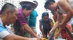 Người dân dùng nước nhiễm styren có thể kiện Cty nước sạch sông Đà