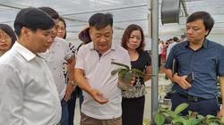 Quảng Ninh: Kỹ sư về hưu nuôi gà, thả cá, trồng lan, thu 15 tỷ/năm