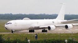 """Máy bay """"chịu được bom hạt nhân"""" của Mỹ bị một chú chim làm cho khốn đốn"""