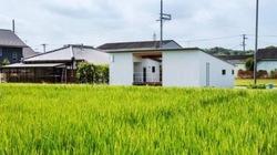 """Làm nhà cấp 4 cạnh ruộng lúa, cả làng """"thèm thuồng"""" vì quá """"đáng sống"""""""