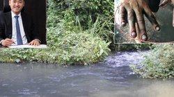 Nước sạch Sông Đà lãi lớn, ông Nguyễn Văn Tuấn và bà Nguyễn Thị Mai Thanh thu tiền tỷ