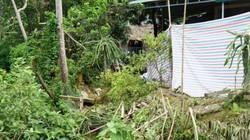 Tìm sự thật nghi án vợ giết chồng rồi phi tang xuống ao ở Tuyên Quang