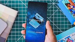 Bất ngờ lý do Huawei không muốn tạo hệ điều hành thay thế Android
