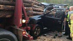 Xe bị hàng loạt cây gỗ đâm xuyên kinh hoàng từ trước ra sau, tài xế vẫn may mắn sống sót