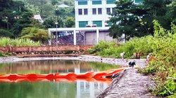 """Những điều bất ngờ từ vụ nước sạch Sông Đà bị """"đầu độc"""""""