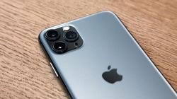 Cuộc chiến nảy lửa giữa camera iPhone 11 Pro và DSLR trị giá 174 triệu đồng