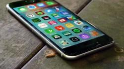 """""""Bí kíp"""" phân biệt iPhone cũ vỏ """"zin"""" và vỏ lô cho các iFan"""